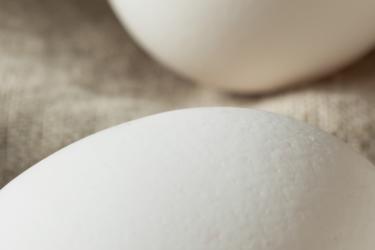 raw-organic-white-eggs-7UQ8Z3X